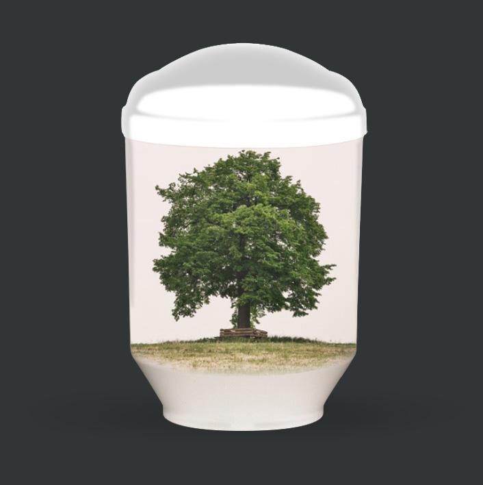 Individuelle Urne - Baum