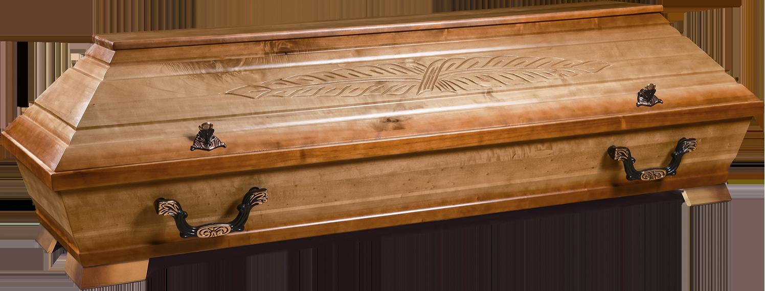 PALME – 102 | Palmenschnitzung